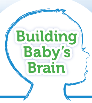 Building Baby's Brain Logo