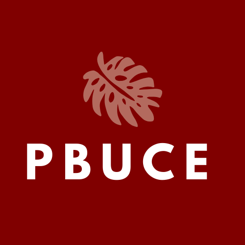 Pacific Basin University Center for Excellence in Developmental Disabilities